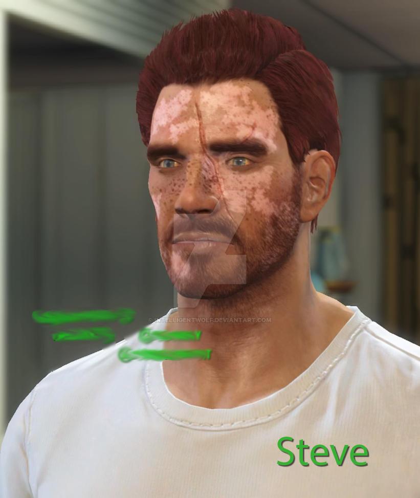 Steve - Fallout 4 by IntelligentWolf