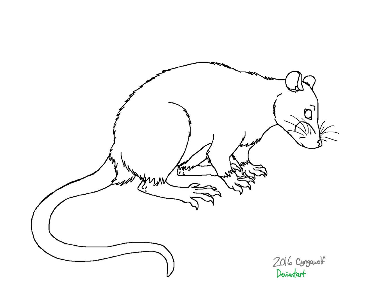 Line Art Rat : Rat lineart remaster by cyngawolf on deviantart