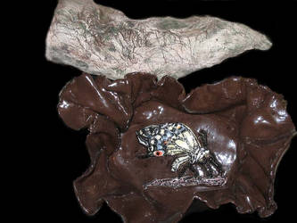 Transformation Bowl w- chrysalis by StephanEGoldenFalcon