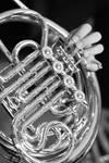 French Horn by prettyflour