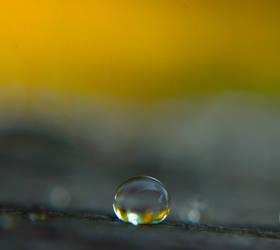 a drop of yellow by prettyflour