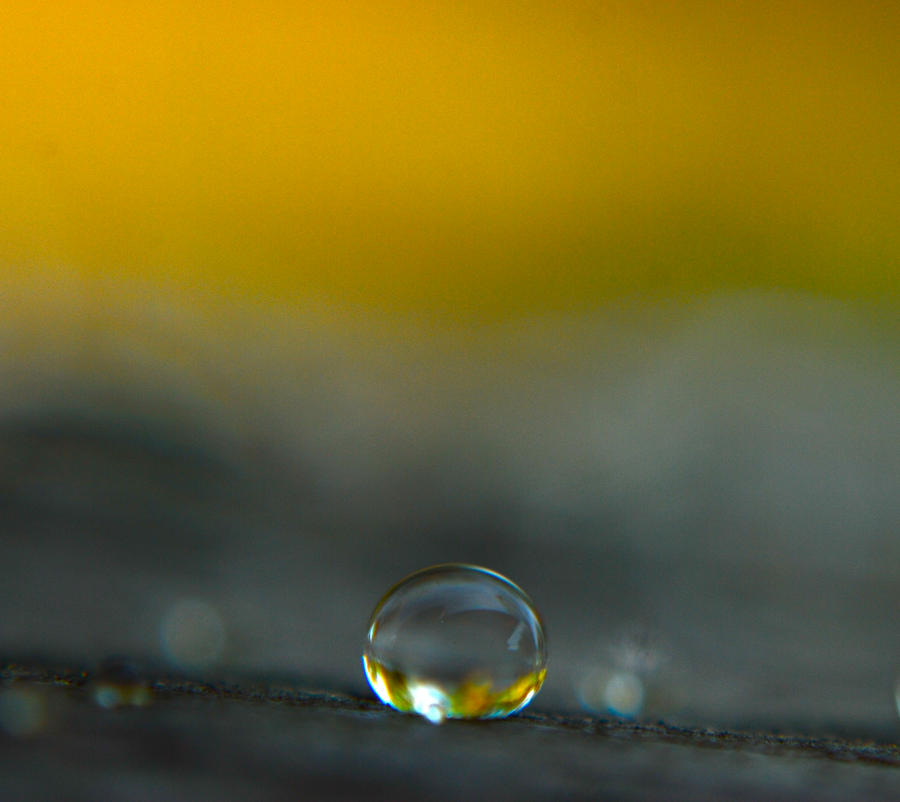 a drop of yellow by prettyflour