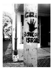 boycott. by b2spiritcat