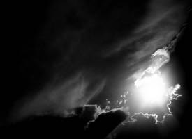 bright. by b2spiritcat
