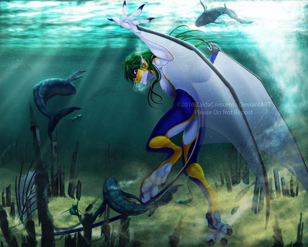 Swimmer by ZaidaCrescent