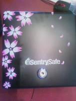 -Sakura cashbox- by Ittermat