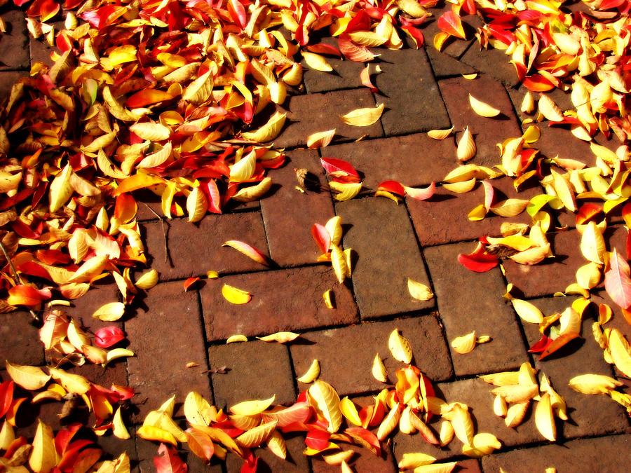 Autumn by IntelligentZombie