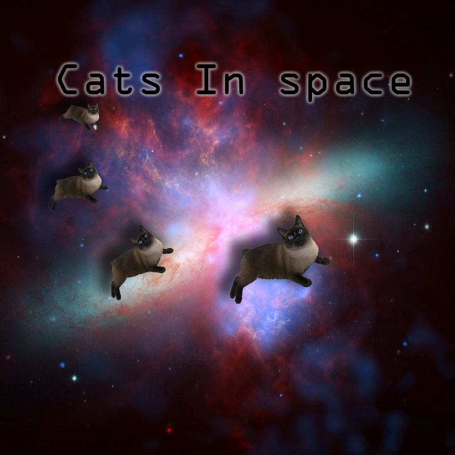 Cats In Space by 231smarty