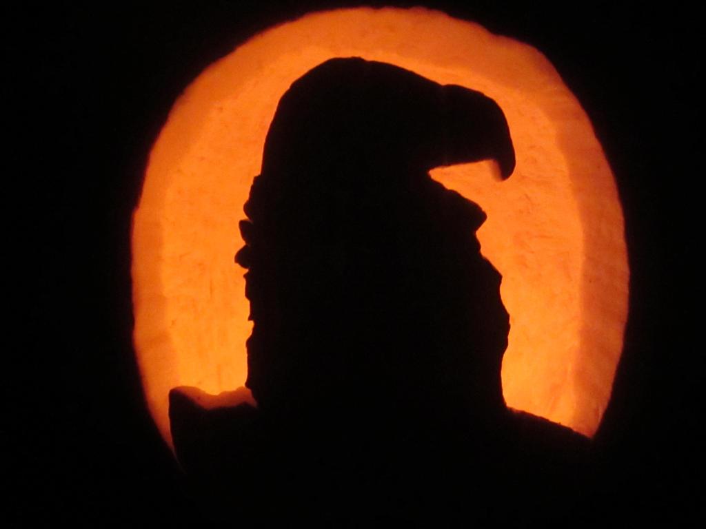 Lappet Faced Vulture pumpkin silhouette by ScarabsCorner