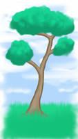 SKETCH A TREE