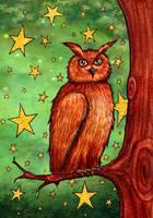 Proud owl by Clef-en-Or