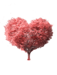 Tree heart stock cut out