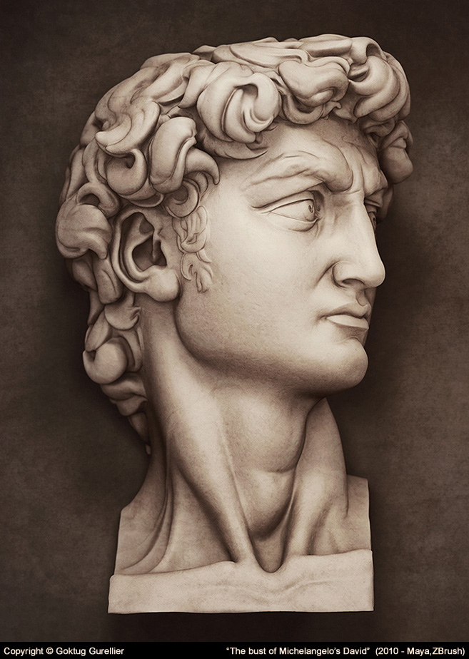 Bust of Michelangelo's David by goktugg