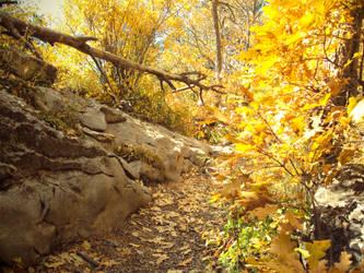 Pathway to the Peak by CAPSLOCK44