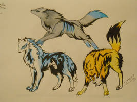Elemental Wolf Adoptables by sonicxamylover