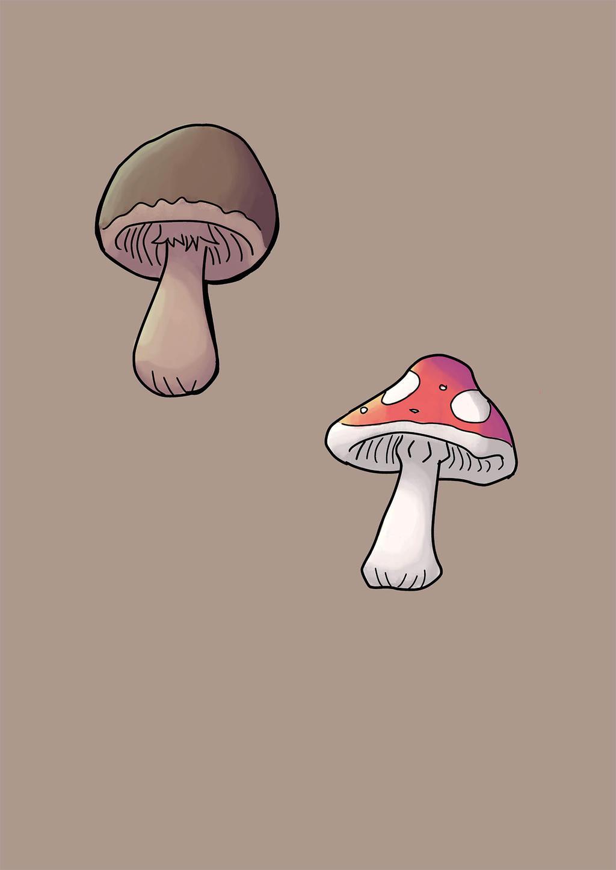 Mushroompaint