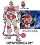 Cybertronian Gladiator STRIKA