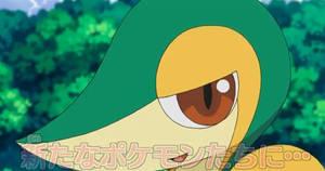 Anime Tsutaja or Smugleaf
