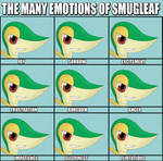 The Many Emotions of Smugleaf
