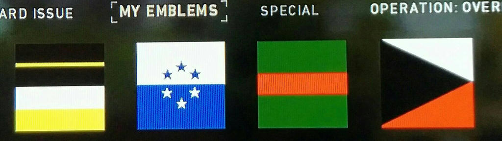 Ace Combat Flags In COD WW2 by Karma45