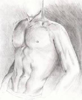 bodystudy2