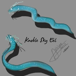 The Knoble Sky Eel
