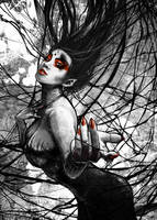 Queen of Webs by Rorus007