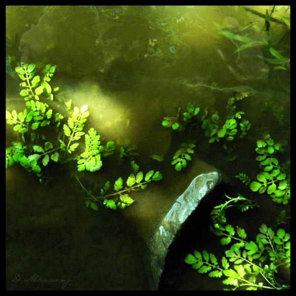 .Murky.Waters. by sadistikid