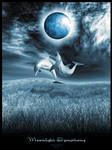 .Moonlight.Symphony.