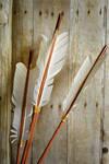 Arrows Detail by PirateLotus-Stock