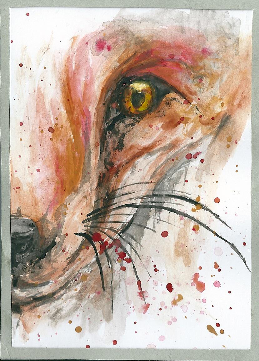 Fox by AnnaBitti