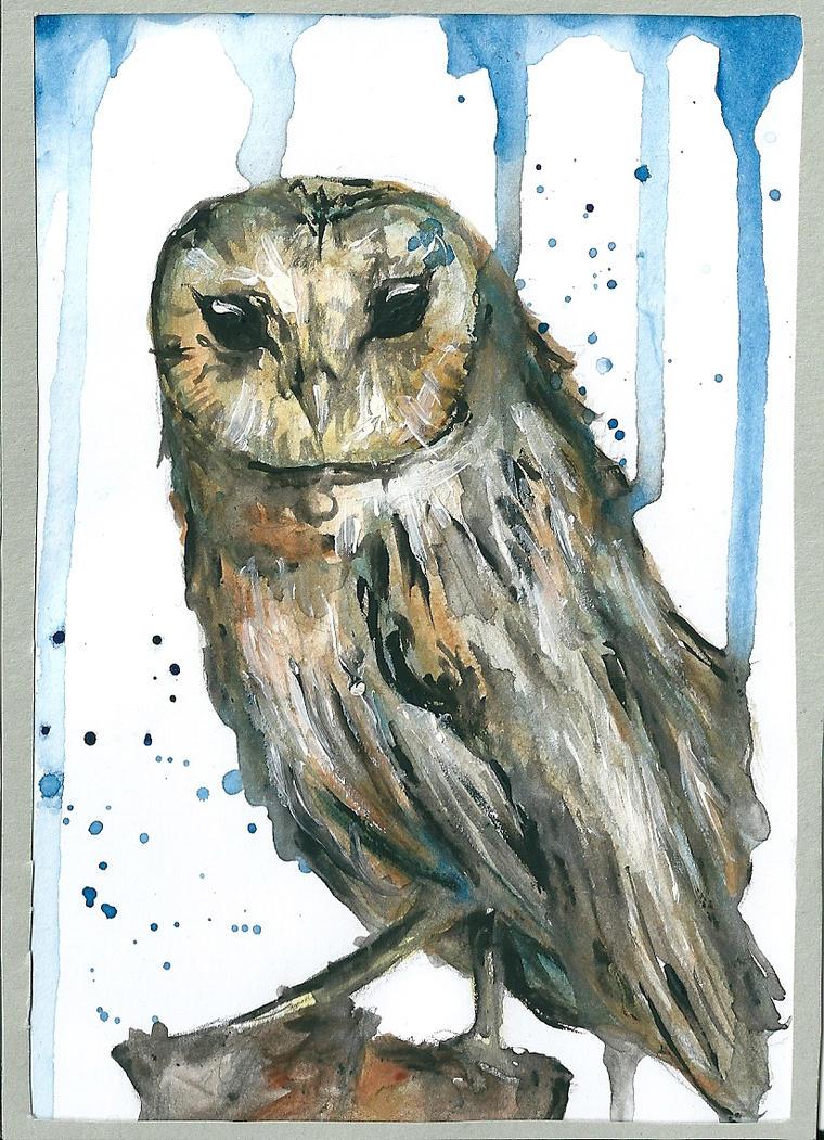 Owl by AnnaBitti