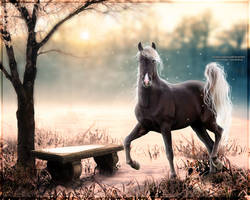 Winter wonderland~ by Nanalina20