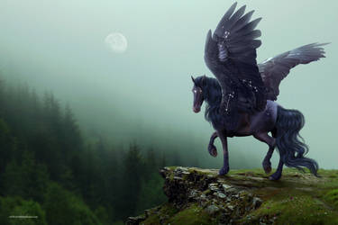 Misty mountains - YHH