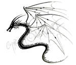 The Three Winged Dragon