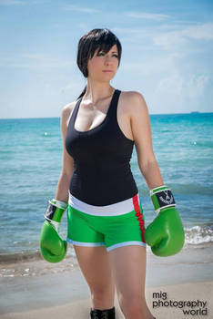 Little Mac Punch Out