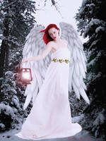 Christmas Angel ~ For Terry by Shirley-Agnew-Art