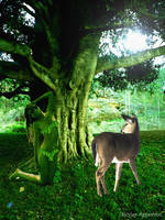 The Dryad And The Deer by Shirley-Agnew-Art
