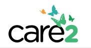 Care2 by Shirley-Agnew-Art