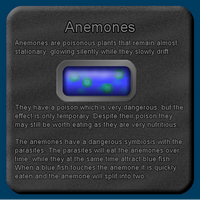Fish Description - Anemones by Scarzzurs