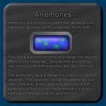 Fish Description - Anemones