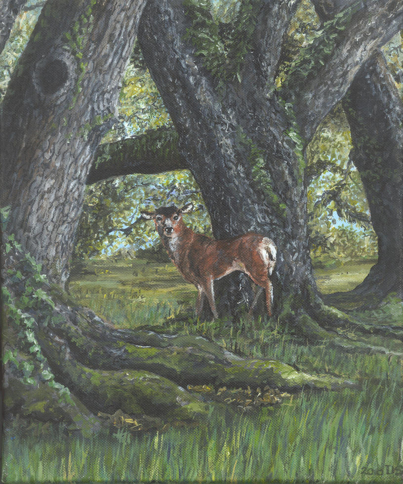 deer between oaks by acrylicwildlife