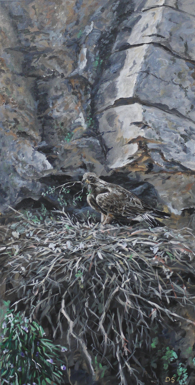 eagles nest by acrylicwildlife