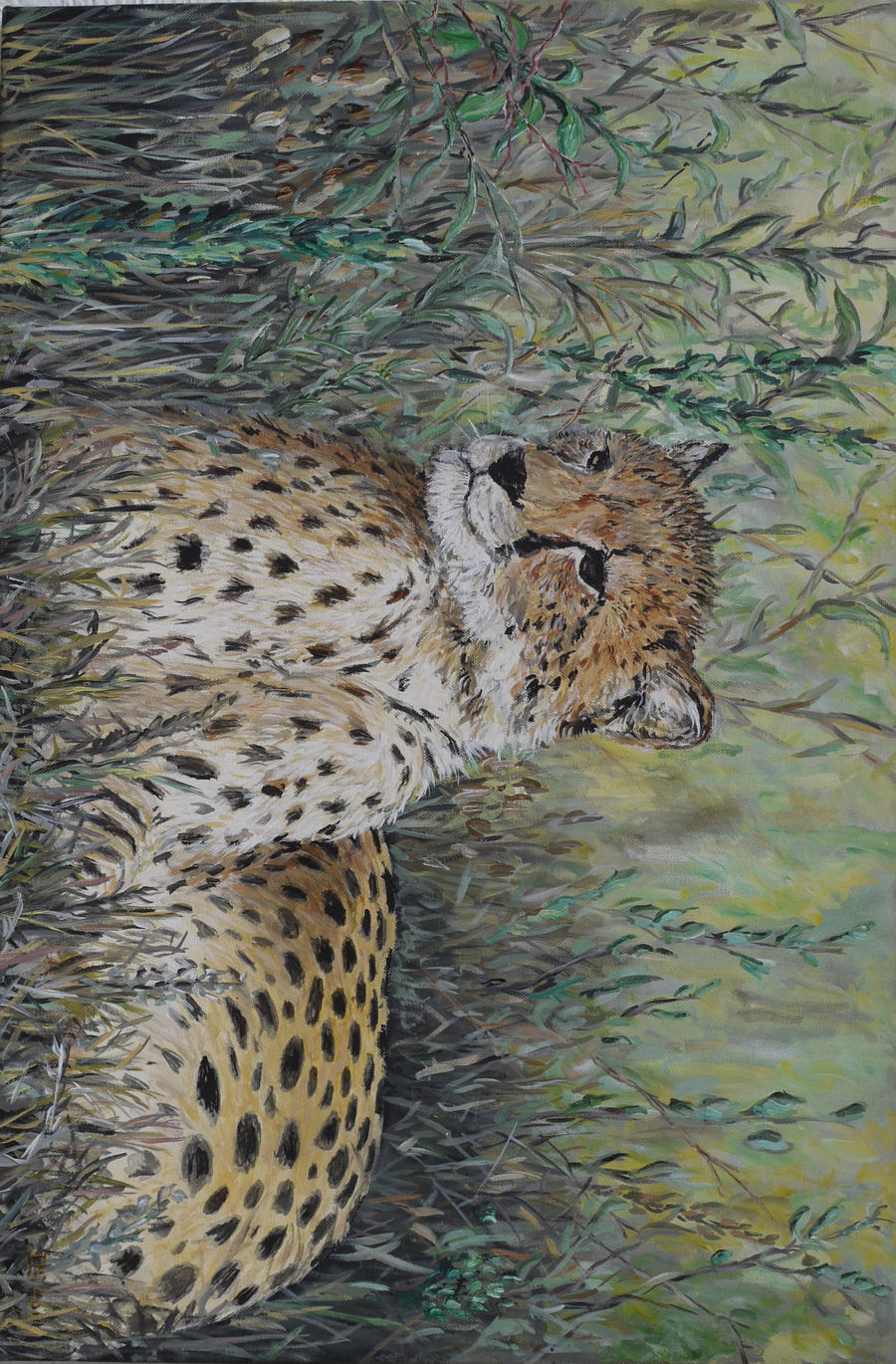 Cheetah in the grass 2 by acrylicwildlife