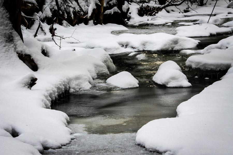 Frozen Stream by steverankin
