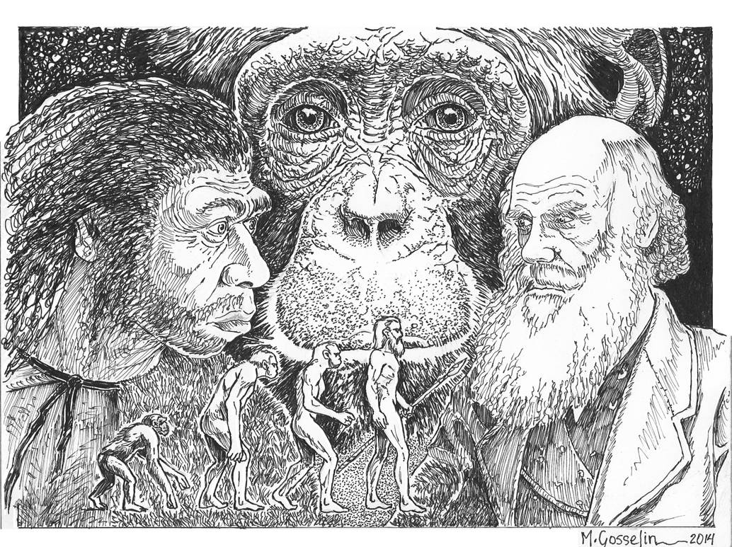 Charles Darwin's Evolution By Marcgosselin by marcgosselin