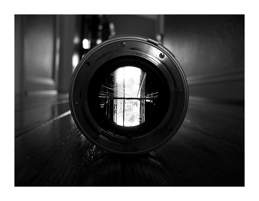the self through lenses Literary theories: a sampling of critical lenses literary theories were developed as a means to understand the various ways people read texts.