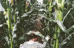 emma in a corn maze