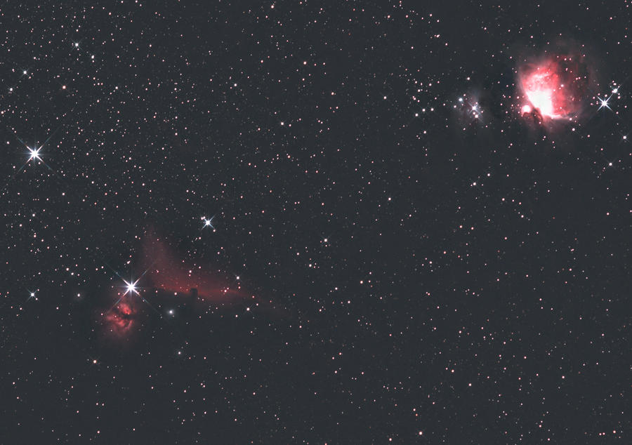 horsehead nebula in orion - photo #12