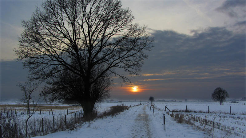 Belgian winter by rollarius55